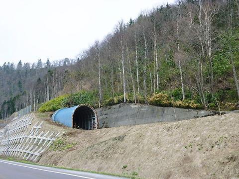 10北海道 141.jpg